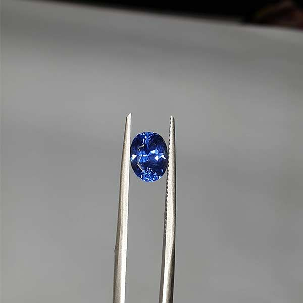 blue8